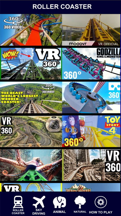 VR 360 Roller Coaster Video HD