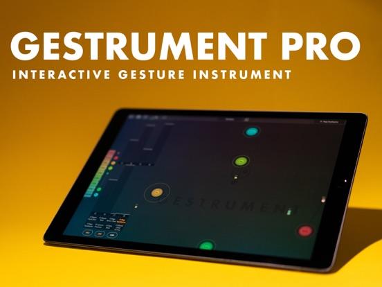 Gestrument Pro