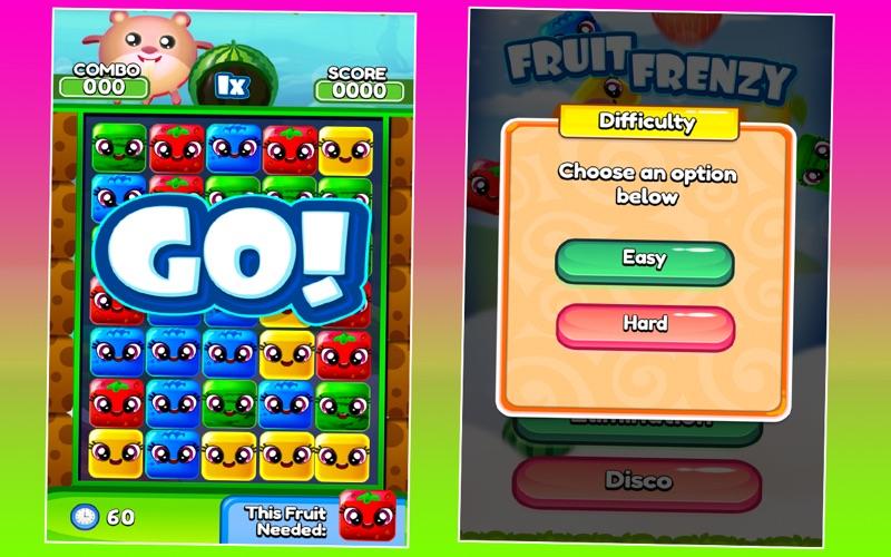 Fruit Frenzy screenshot 4