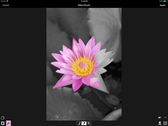 ACDSee Pro Screenshots