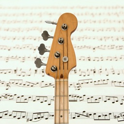 Bass Guitar Notes