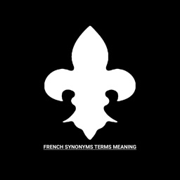 French Synonyms Terms Meaning