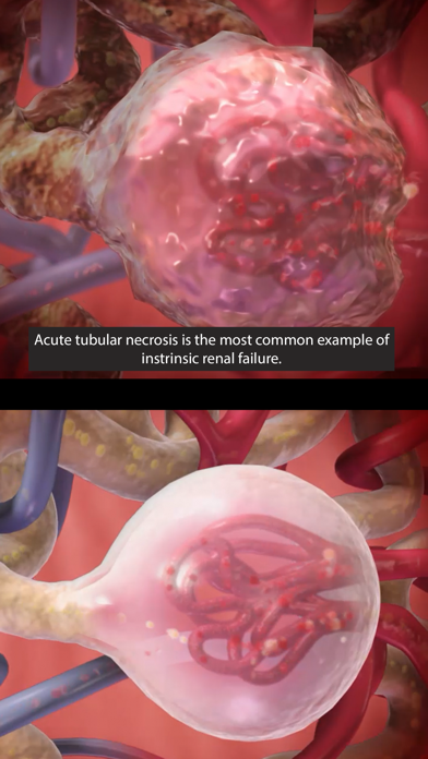 Physiology & Pathology screenshot 3