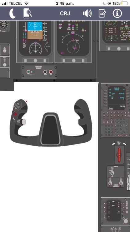 CRJ Virtual Panel