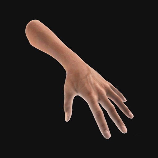 Hand Draw 3D Pose Tool icon