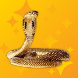 Hiss Pro - Snake Sounds