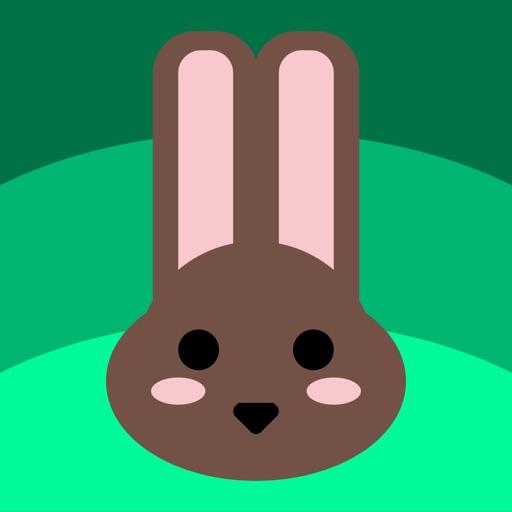 Weather Bunny