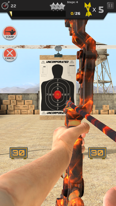Arrow Master: Archery Game Screenshot 2