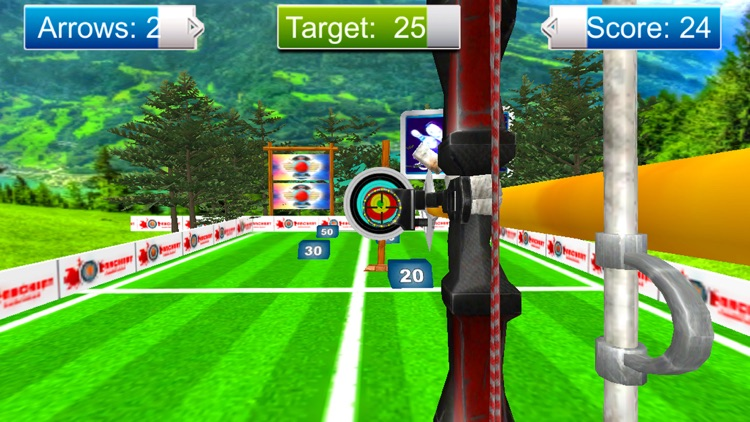 Archery Master Target Shooter screenshot-4