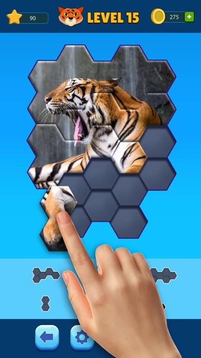Hexa Jigsaw Puzzle ® screenshot 1
