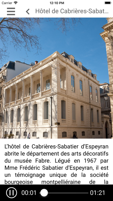 Hôtel Sabatier d'Espeyran screenshot 4
