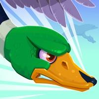 Codes for Duckz! Hack