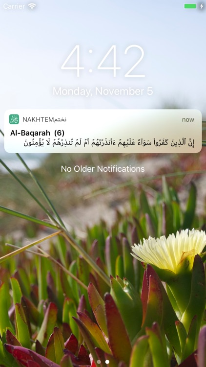 نختم screenshot-4