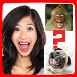 Funny Animals Mimics
