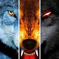 Codes for Wolf Online Hack