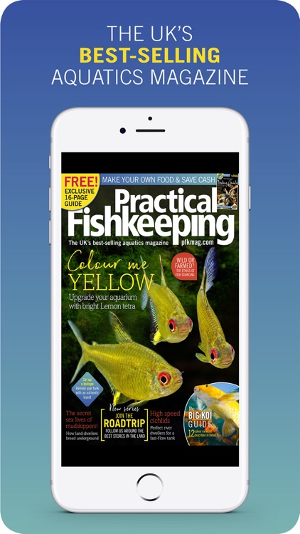 PFK: Practical Fishkeeping