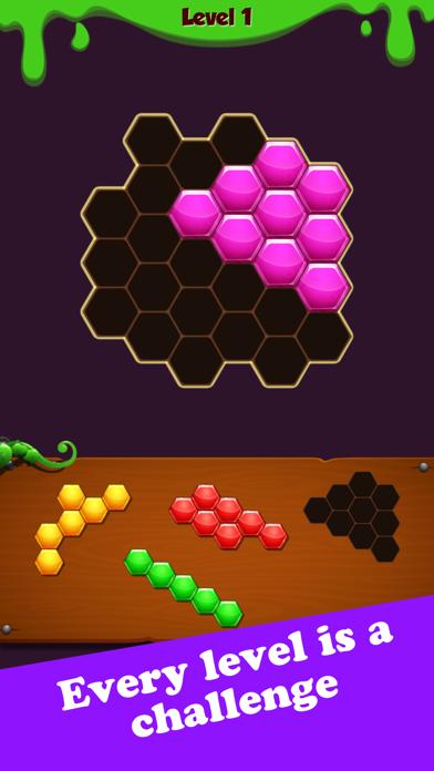 Hexa Block Puzzle: Challenge for windows pc