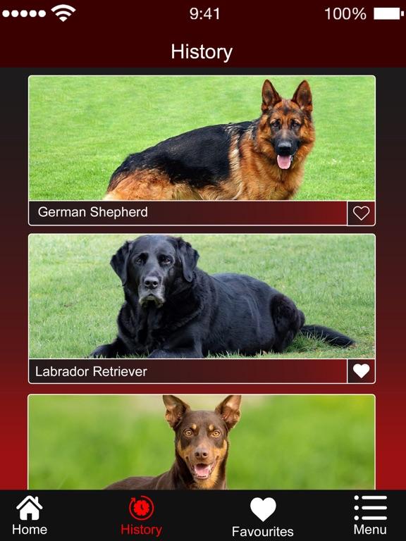 Dog Breed:Scanner & Identifier screenshot 5