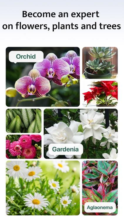 Blossom - Plant Identification screenshot-5