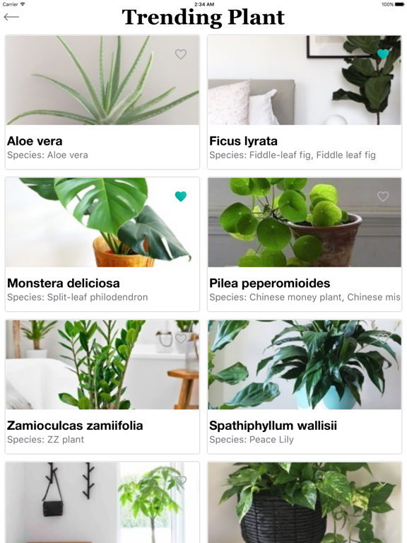 PlantFinder - Quick identifier Screenshots