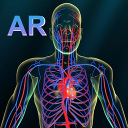 AR Vascular system