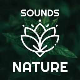 Relaxing Music - Nature,Yoga