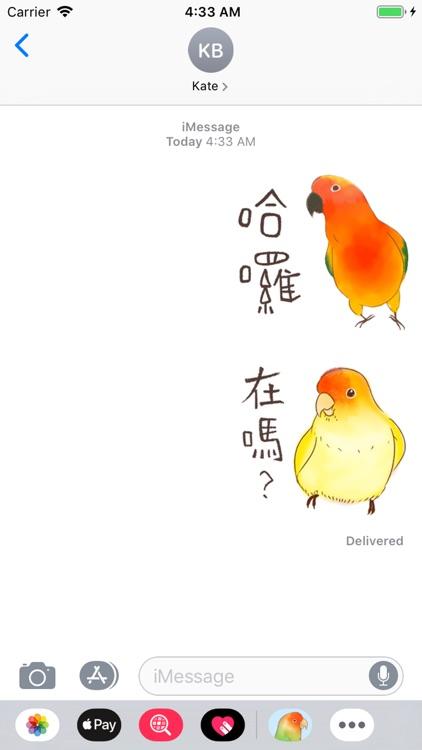 小可愛搞怪鳥家族