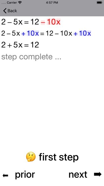 20/20 Linear Equations screenshot-5