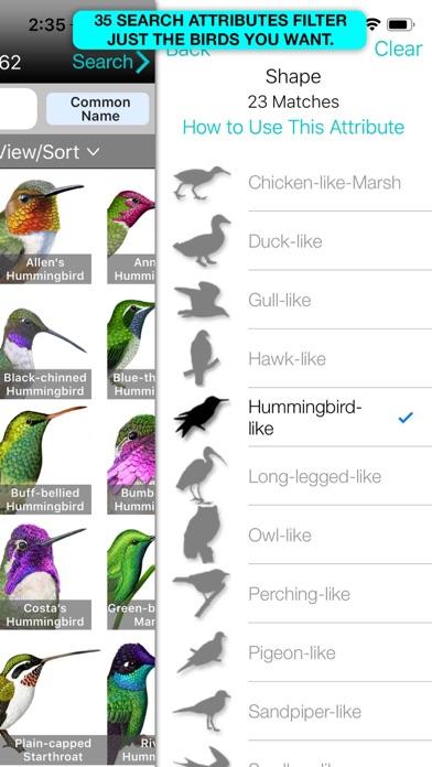 iBird Ultimate Guide to Birds Screenshot