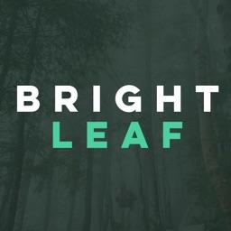 Brightleaf -