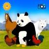 みんな見つけて:動物を探して - iPadアプリ