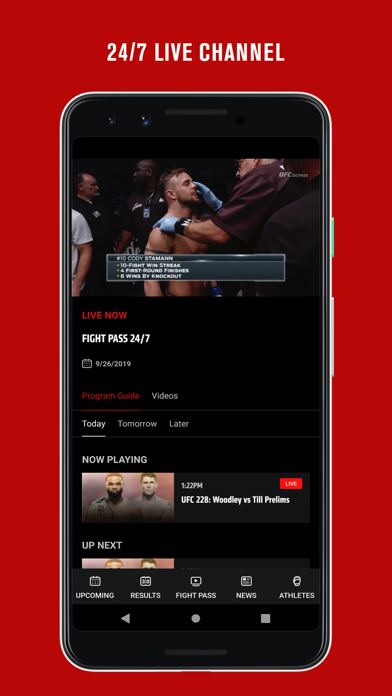 UFC Screenshot