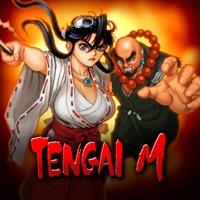 Codes for TENGAI M Hack