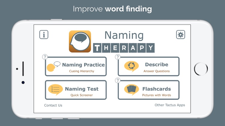 Naming Therapy