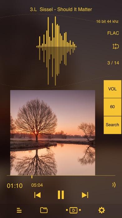 Oriole Music Player ScreenShot0