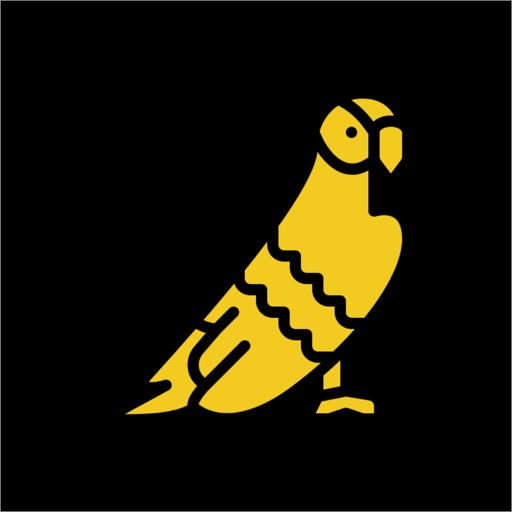 Bird Name Quiz