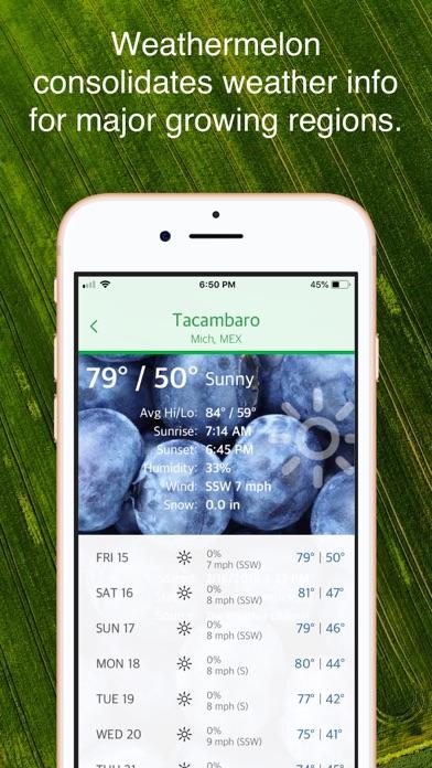Weathermelon Screenshot