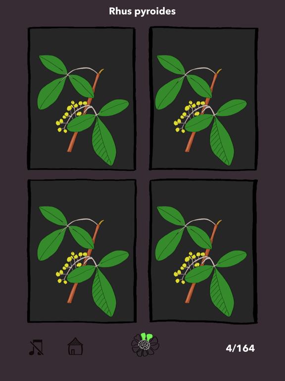 The Tree Seasonsのおすすめ画像2