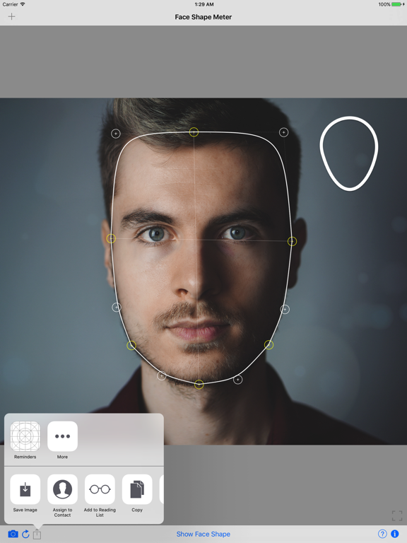 Face Shape Meter from picture Screenshots