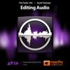 点击获取mPV Course For Editing Audio