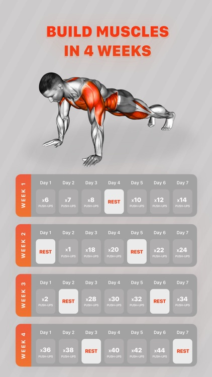 Workouts by Muscle Booster