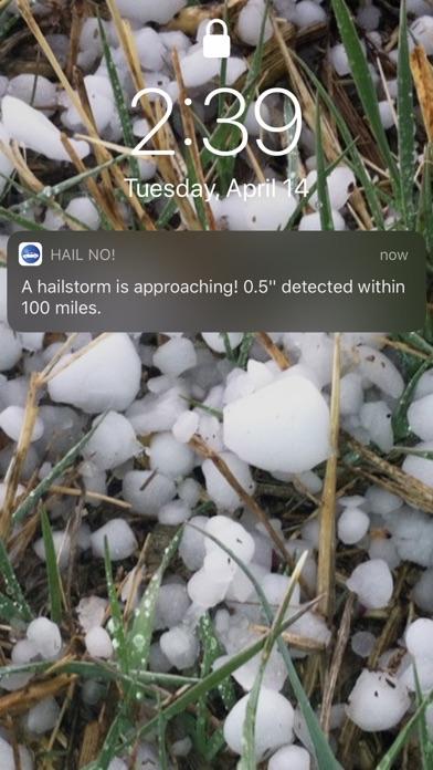 Hail No! Screenshot