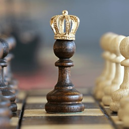 Chess Master - Ultimate guide