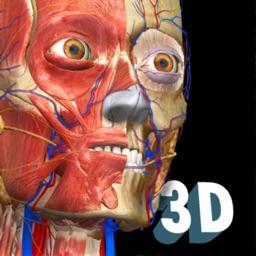 3D Anatomy Learning - Atlas