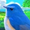 鳥マスター! - iPhoneアプリ