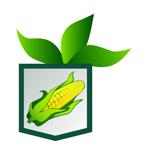 Sweet Corn Scout