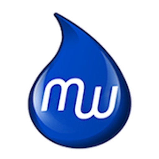 MobileWash Car Wash On-Demand