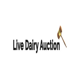 Live Dairy Auction