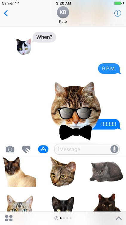 Cat Stickers for Messages screenshot-4
