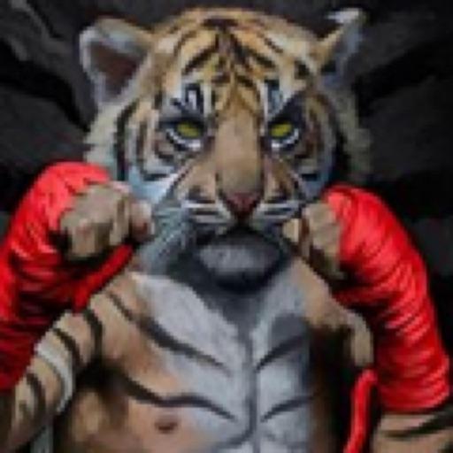 Tiger Punch